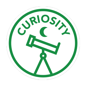 Curiosity and Youth Entrepreneurship Lessons