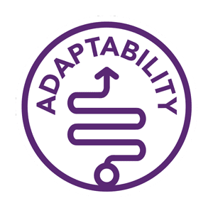 adaptability is an important part of youth entrepreneurship