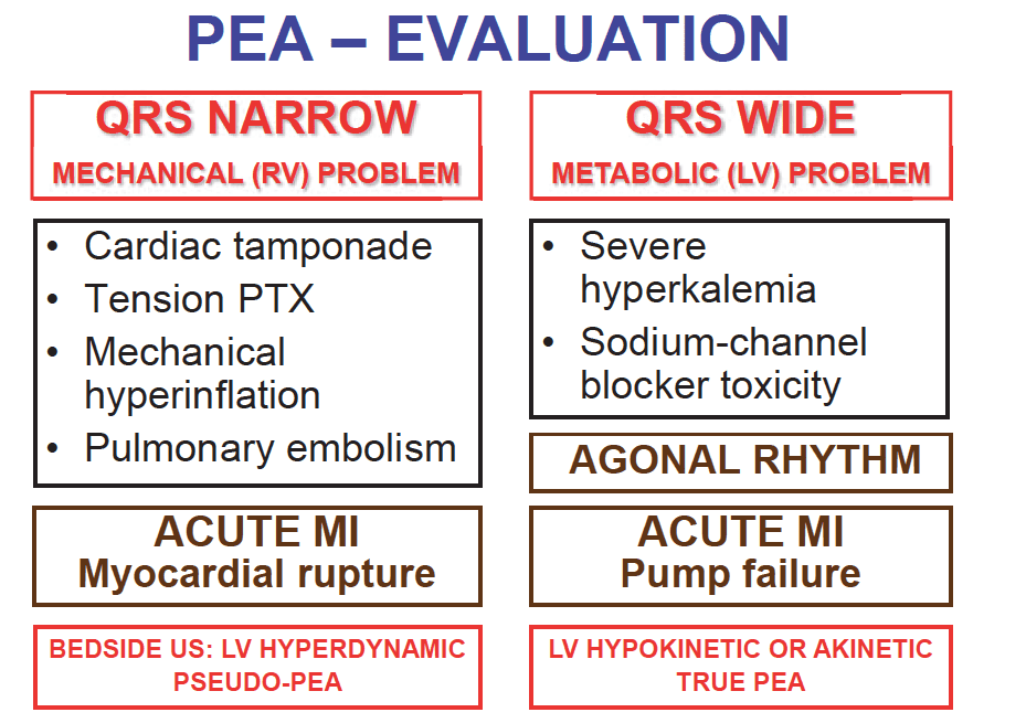 New Classification of PEA