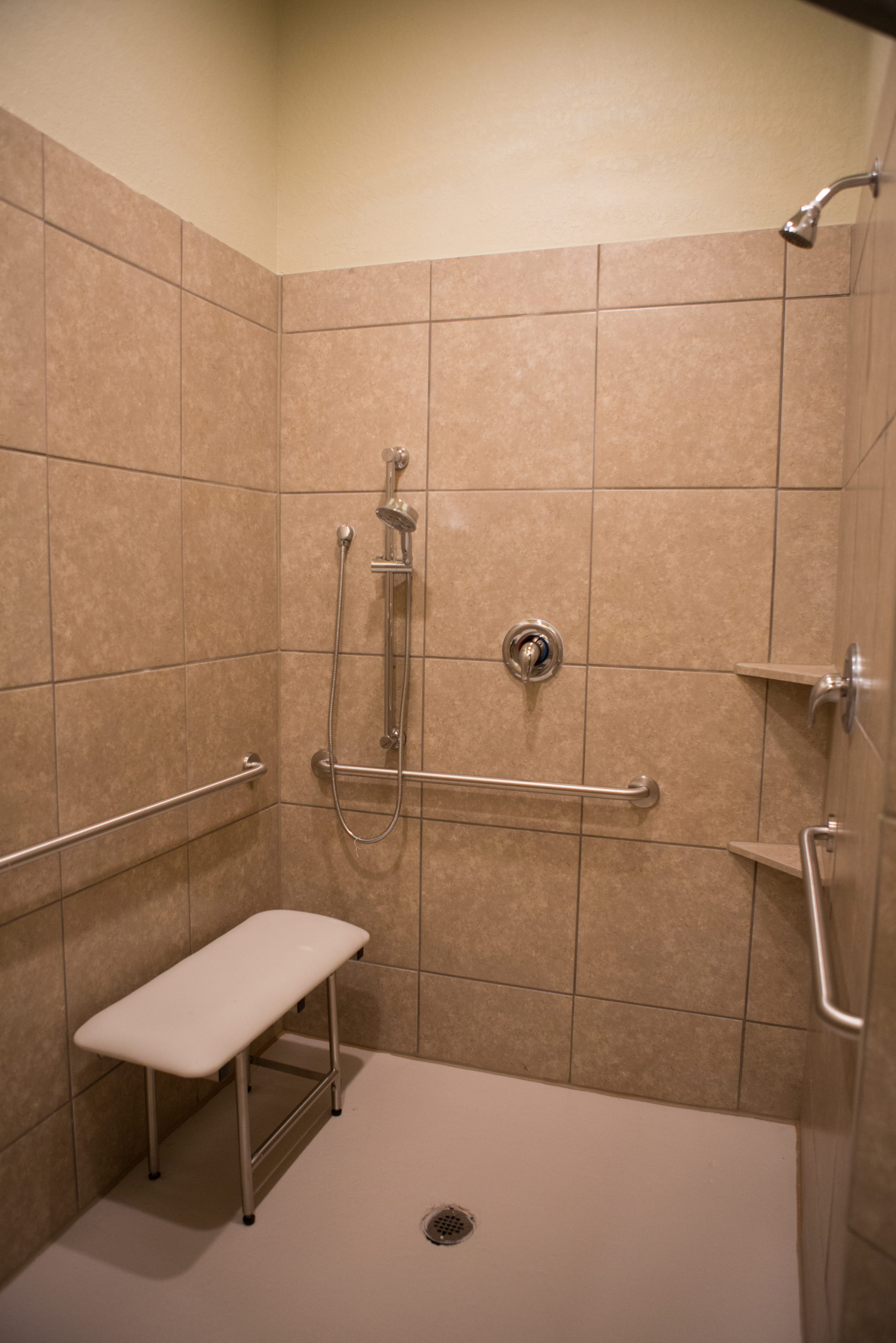 accessible shower (1)